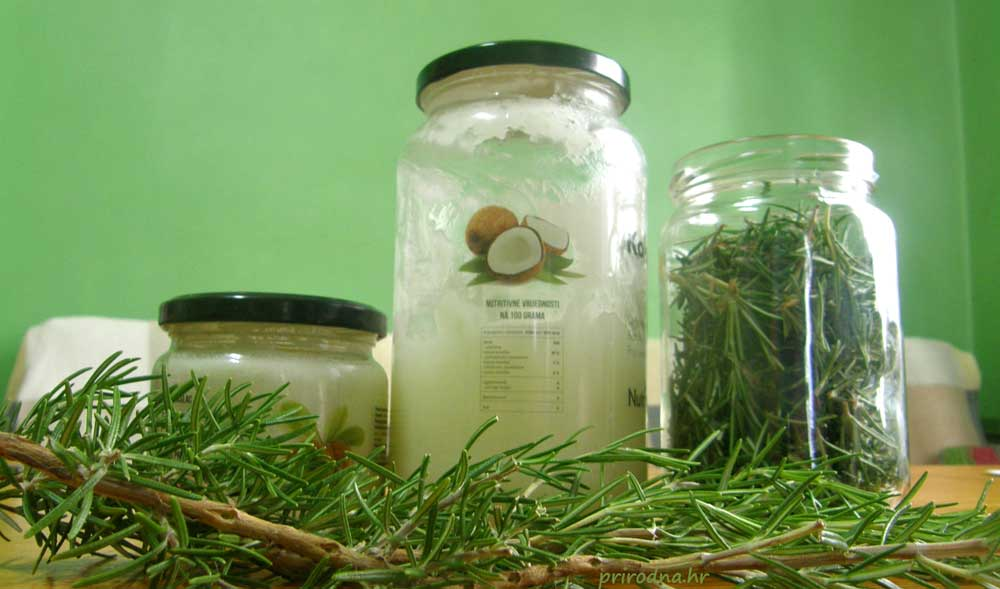 Macerat ružmarina u kokosovom ulju